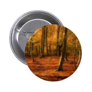 Autumn woods pinback buttons
