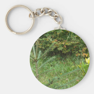 Autumn Woods Basic Round Button Key Ring