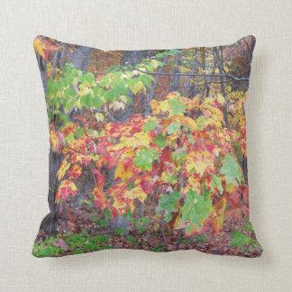 Autumn Woods Glory Throw Cushion