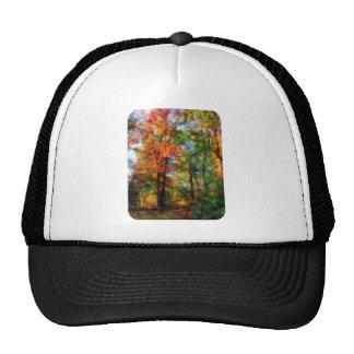 Autumn Woods Hat