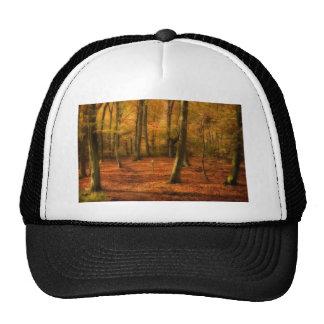 Autumn woods hats