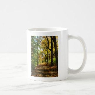 autumn woods coffee mugs