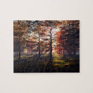 Autumn Woods Puzzles