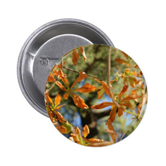 Autumnal gold leaves illustration of flowers pinback buttons