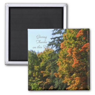 Autumnn Tree Scene. Magnet