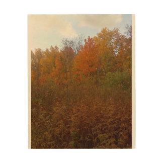 """Autumn's Glory"" Wood Canvas"