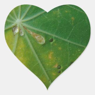 Autumn's Kiss Heart Sticker
