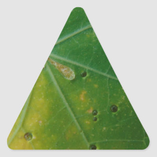 Autumn's Kiss Triangle Sticker