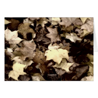 Autumn's Tapestry Card