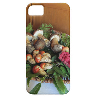 Autumun composition iPhone 5 covers