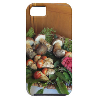 Autumun composition iPhone 5 cases