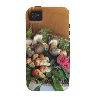 Autumun composition Case-Mate iPhone 4 covers