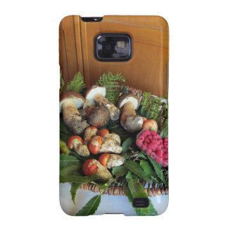 Autumun composition galaxy SII cases