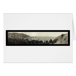 Avalon Catalina Island Photo 1911 Card