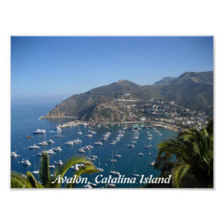 Avalon, Catalina Island Poster