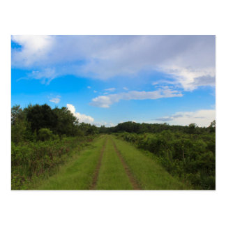 Ave Maria, Florida Postcard - Rural Land