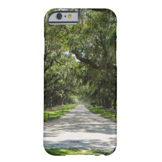 Avenue Of Oaks Barely There iPhone 6 Case