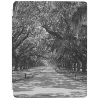 Avenue Of Oaks Grayscale iPad Cover