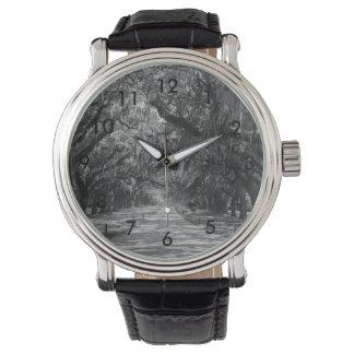 Avenue Of Oaks Grayscale Watch