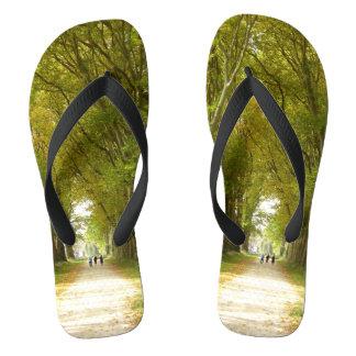 Avenue of Trees Flip Flops