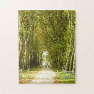 Avenue of Trees Photo Puzzle with Gift Box