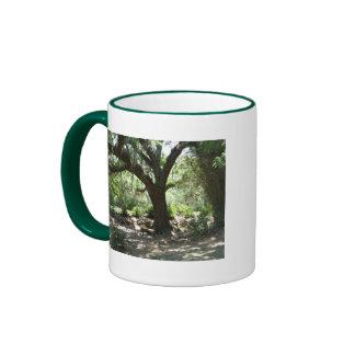 Avery Island moss covered tree Mugs