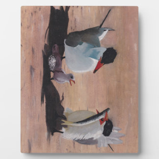 Avian Family Feeding Time Landscape Orientation Display Plaques