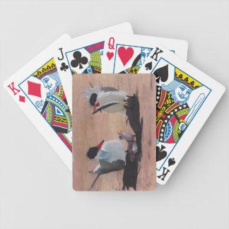 Avian Family Feeding Time Poker Deck
