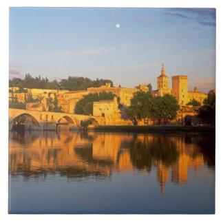 Avignon, Vaucluse, Provence, France, Rhone Large Square Tile