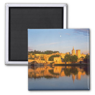 Avignon, Vaucluse, Provence, France, Rhone Square Magnet
