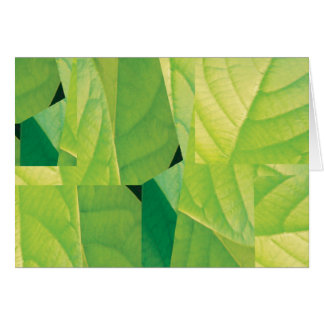 Avocado Leaf Note Card