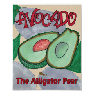 Avocado, The Alligator Pear Kitchen Poster Print