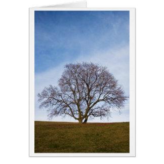 awaiting seasons greeting card