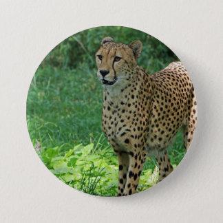 Awesome cheetah 7.5 cm round badge