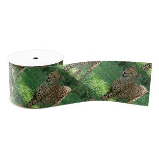 Awesome cheetah grosgrain ribbon
