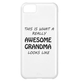 Awesome Grandma iPhone 5C Case