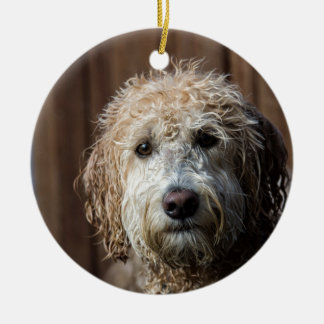 Awesome Labradoodle Pup gifts Ceramic Ornament