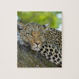Awesome Leopard Jigsaw Puzzle