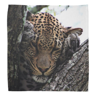 Awesome Leopard Kerchief
