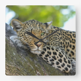 Awesome Leopard Square Wall Clock