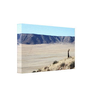 Awesome Namibian Landscape Stretched Canvas Print