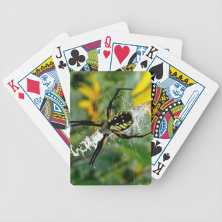 Awesome Photo Orb Spider in Web Bicycle Playing Cards