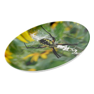 Awesome Photo Orb Spider in Web Porcelain Serving Platter