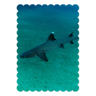 Awesome Shark in the Deep 13 Cm X 18 Cm Invitation Card