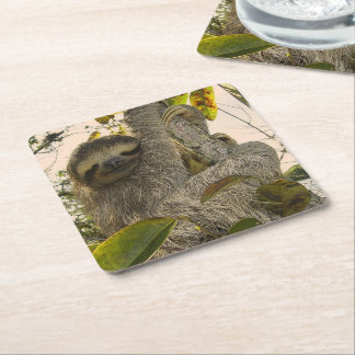 Awesome Sloth Square Paper Coaster