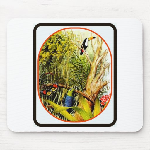 Awesome Tropical Jungle Birds Butterfly Photo Mousepads