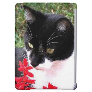 Awesome Tuxedo Cat in Garden