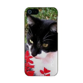 Awesome Tuxedo Cat in Garden Incipio Feather® Shine iPhone 5 Case