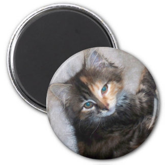 Awesome two faced cat 6 cm round magnet