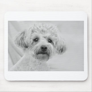 Awesome  Yorkie Poo in Sepia Tones Mouse Pad
